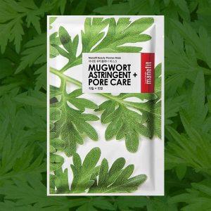گیاه خاراگوش (Mugwort)